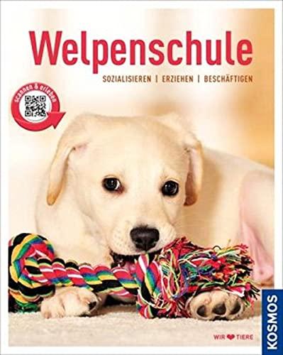 Welpenschule: Sozialisieren, Erziehen, Beschäftigen (Mein Tier)
