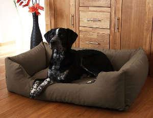 Hundebett Komfort
