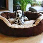 Hundebett Material