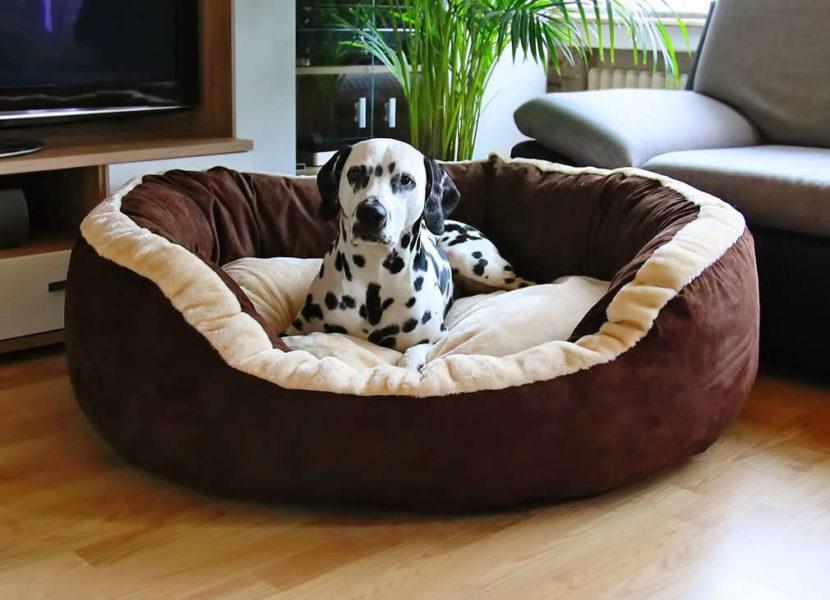 hundebett material. Black Bedroom Furniture Sets. Home Design Ideas