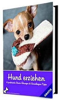 Hund erziehen eBook Ratgeber Cover